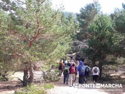 Senderismo Cueva Valiente - Pico Cueva Valiente - Entre pinar segoviano; senderismo nocturno